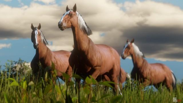 Wildlife in Red Dead Redemption 2: Details on Animals, Hunting & Fishing, Screenshots & Artworks!