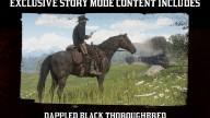RDR2 Horses Thoroughbred DappledBlackThoroughbred