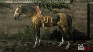 Amber Champagne Missouri Fox Trotter - RDR2 & Red Dead