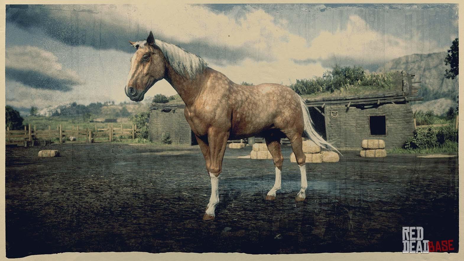 Palomino Dapple American Standardbred Rdr2 Red Dead Online Horses Database Statistics Red Dead Redemption 2