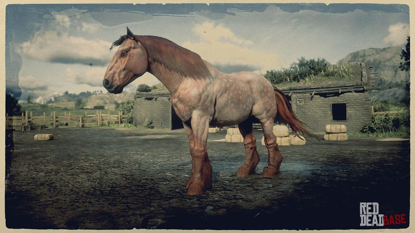 Ardennes Red Dead Redemption 2 Horse Breeds Guide Red Dead Redemption 2 Animals Species Wildlife Database Red Dead Redemption 2