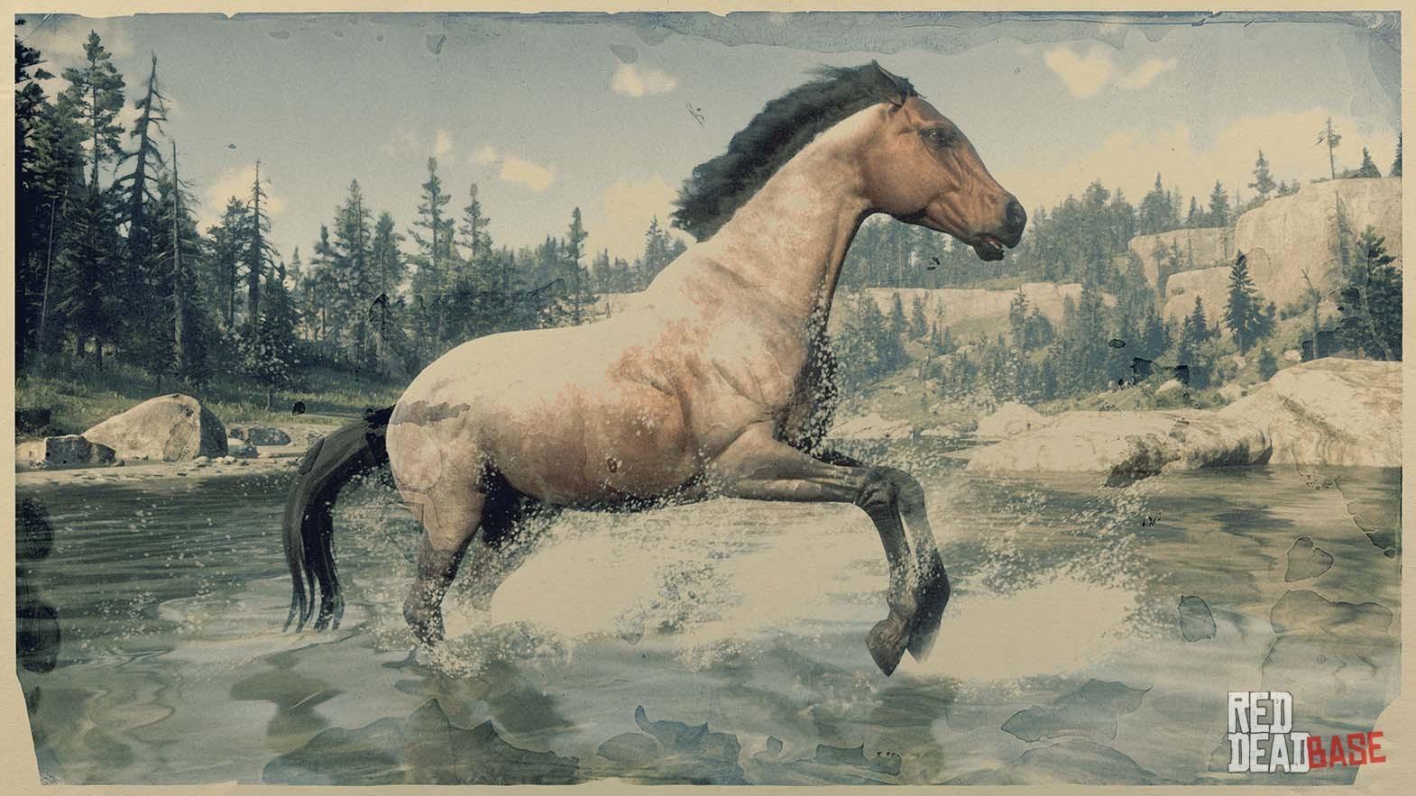 Bay Roan Morgan Horse Red Dead Redemption 2 Horses