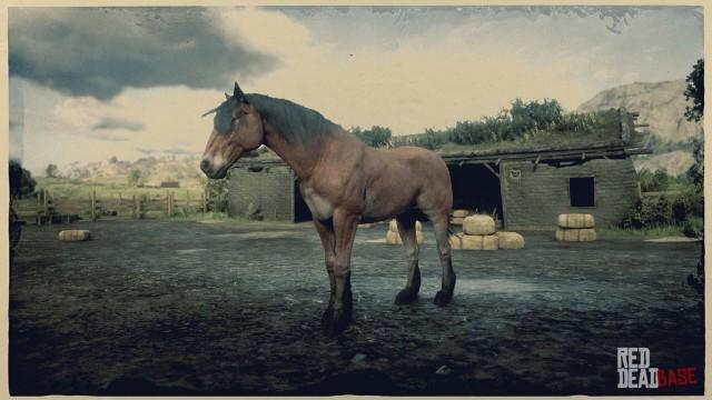 Wild Bay Mustang - Red Dead Redemption 2 Horses Database ...