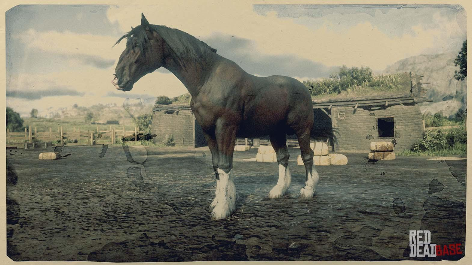 Shire Horse Red Dead Redemption 2 Horse Breeds Guide Red Dead Redemption 2 Animals Species Wildlife Database Red Dead Redemption 2