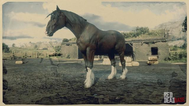 Dark Bay Shire Horse - Red Dead Redemption 2 Horses ... | 640 x 360 jpeg 68kB