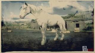 Light Grey Shire Horse