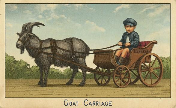 RDR2 CigaretteCards Vehicles 5 Goat