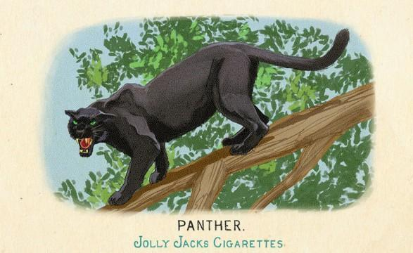 RDR2 CigaretteCards Animals 8 Panther