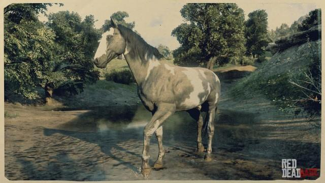 RDR2 Horse - Tobiano American Paint Horse