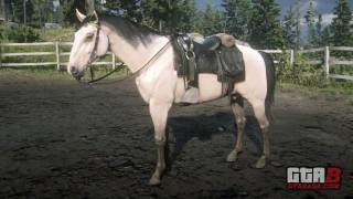 Buttermilk Buckskin Kentucky Saddler