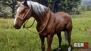 Gold Palomino Tennessee Walker