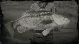 Legendary Largemouth Bass