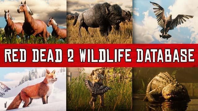 Red Dead Redemption 2 Animals Species Database: All Animals