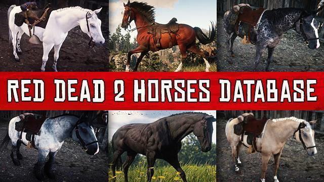 Red Dead Redemption 2 Horses Database: All Horses Statistics, Prices & Locations